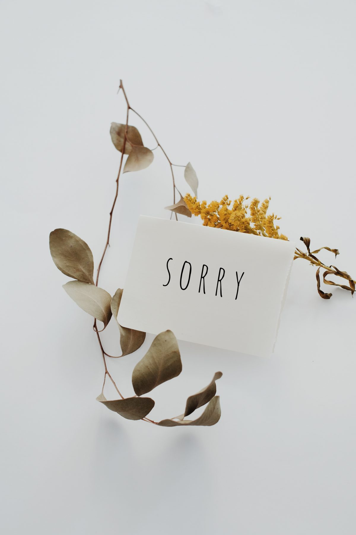 How (and Why) Your Business Should Apologize For Its Mistakes